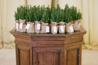 10 Evergreen trees in burlap were wedding favors