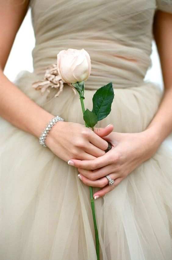 a closed blush rose paired with a blush wedding gown for an elegant and chic bridal look