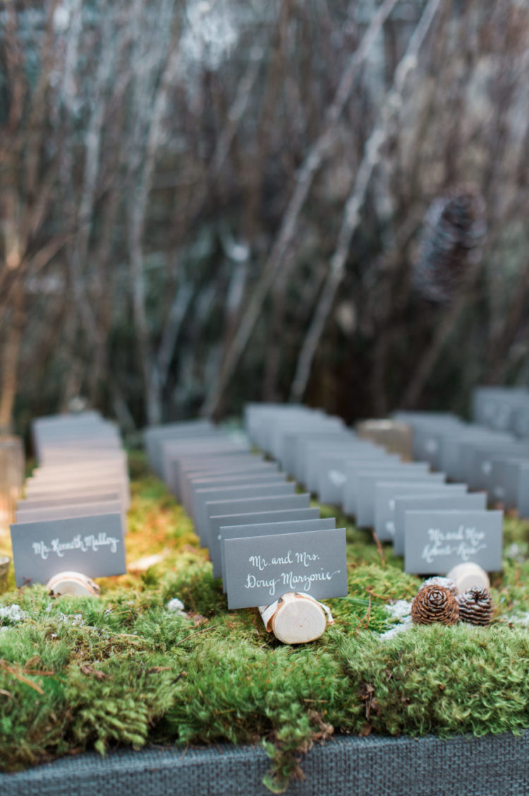 The cards were placed on birch slices, moss and pinecones