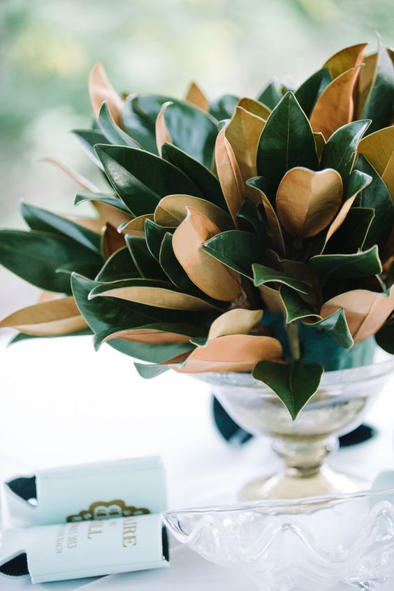 a silver bowl wwith magnolia leaves is an exquisite centerpiece