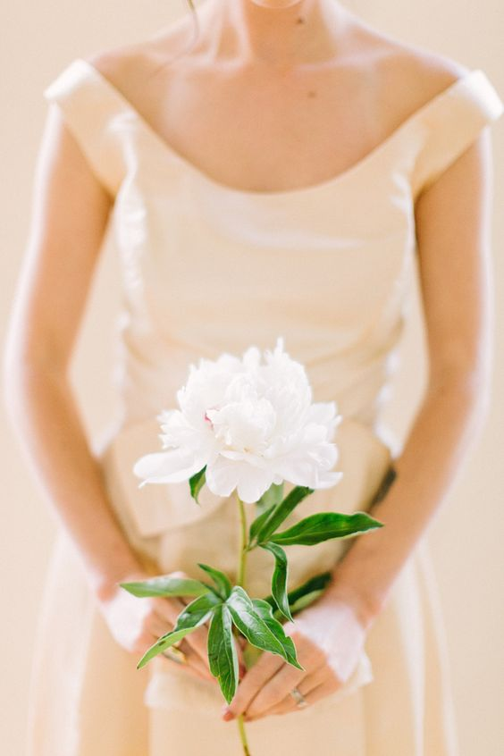 a single white peony will not only look cool but also smell amazing