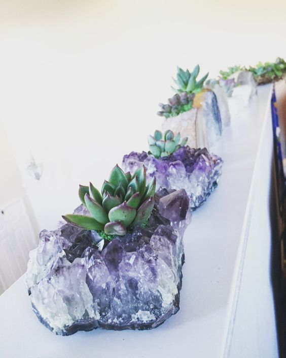 plant succulents into amethysts and use them for decor and centerpieces to create a wow effect