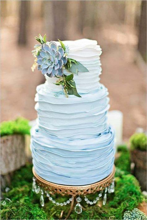 a buttercream ombre blue wedding cake with alarge succulent on top and some greenery