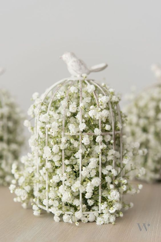 a mini cage filled with baby's breath is all you need for a cute look