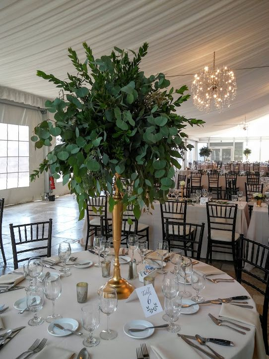 a tall foliage centerpiece with myrtle, seeded and silver dollar eucalyptus in a brass vase