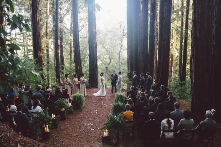 The ceremony site was so beautiful that it didn't require other decor than some candles on stumps and ferns