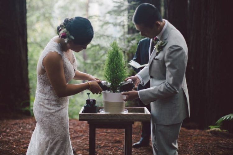 The couple opted for planting a sequoia during the wedding ceremony
