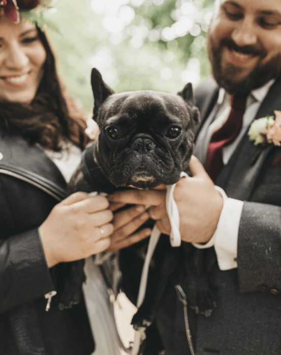 The couple's pup took an active part in the wedding