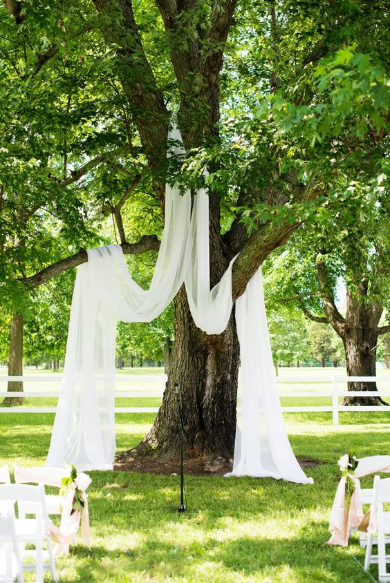 hang some light and sheer fabric on the tree to create a natural ceremony space