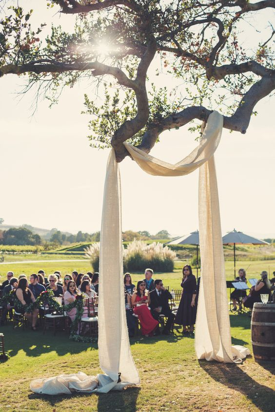 some light fabric hung on a tree branch as a wedding arch is a creative idea