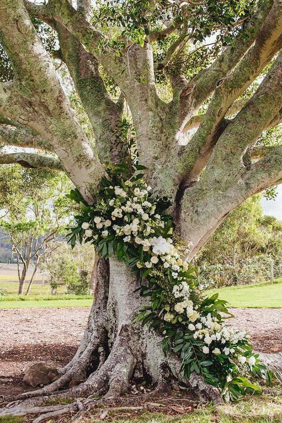 a large tree decorated with lush greenery and white blooms for a ceremony backdrop
