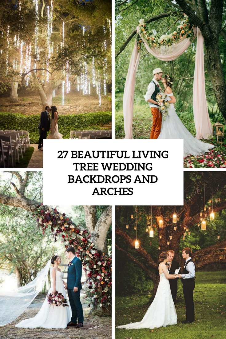 beautiful living tree wedding backdrops and arches cover