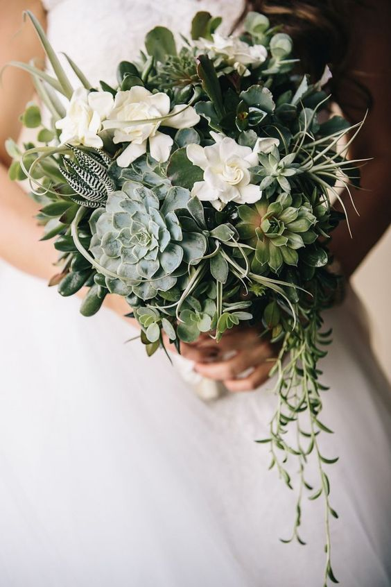a chic wedding bouquet with various succulents, air plants, white blooms and cascading vines
