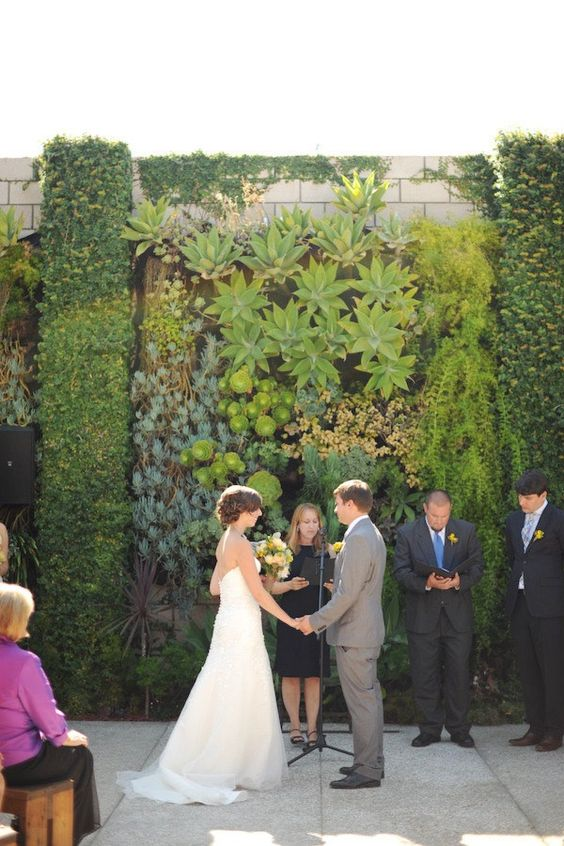 a living wlal of sucuclents and air plants for a lush outdoor and even tropical forest feel at the wedding
