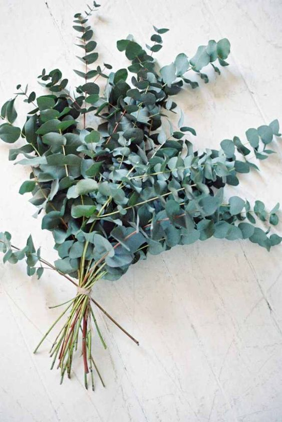 a simple eucalyptus wedding bouquet is a chic idea for a minimalist or modern bride