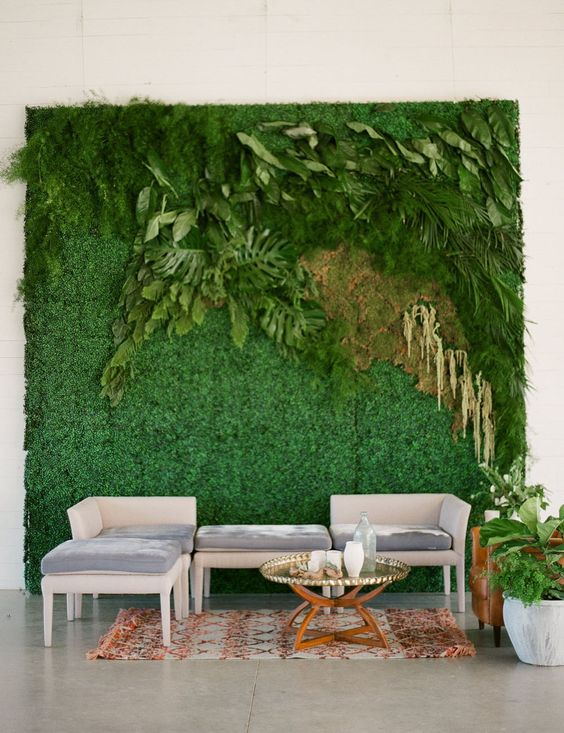 a living wall with greenery, fern and leaves as a wedding lounge backdrop that brings a fresh feel in