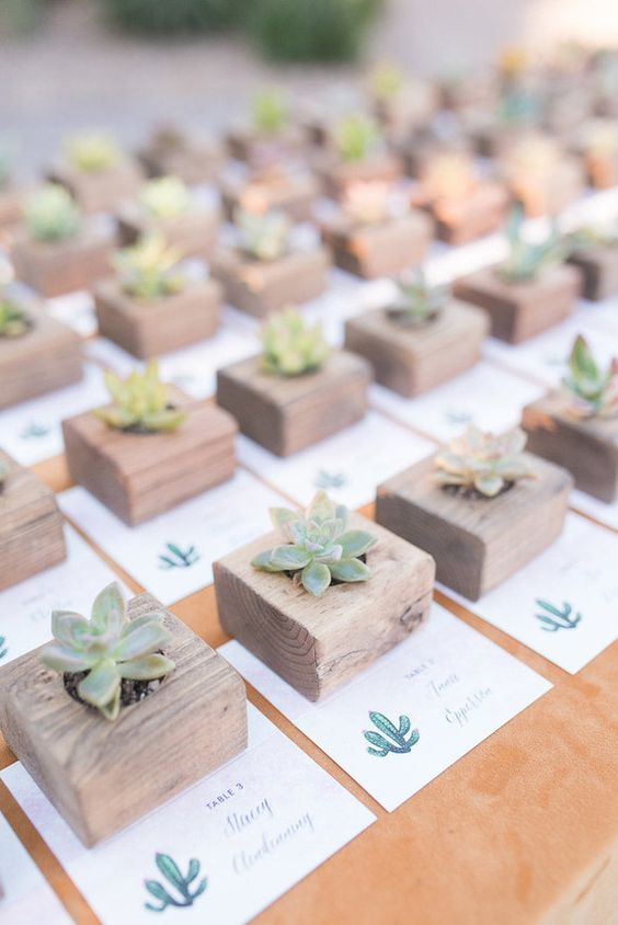 succulent wedding favors and escort cards - little wooden pots make the favors cooler
