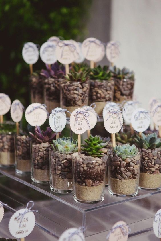 succulent wedding favors with pebbles and sand and various tags as escort cards
