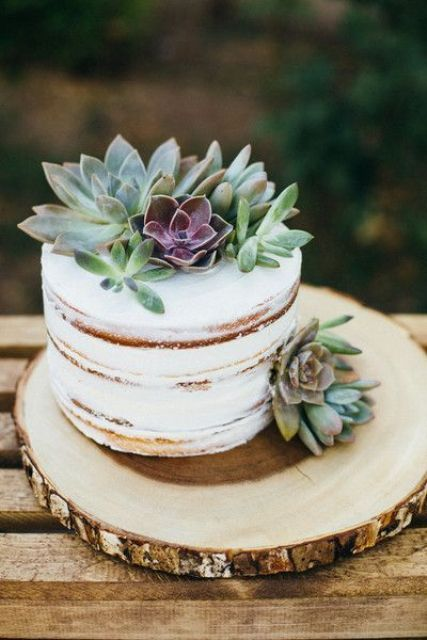 a naked wedding cake topped with succulents to give it a modern rustic look
