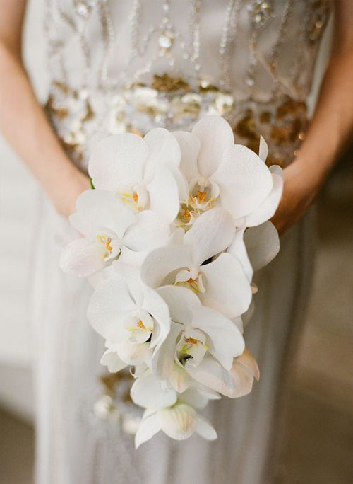 an elegant and refined white orchid wedding bouquet with a slight cascade for a refined bride