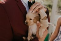 03 The bride gave the groom a pup as a gift and their new family pet