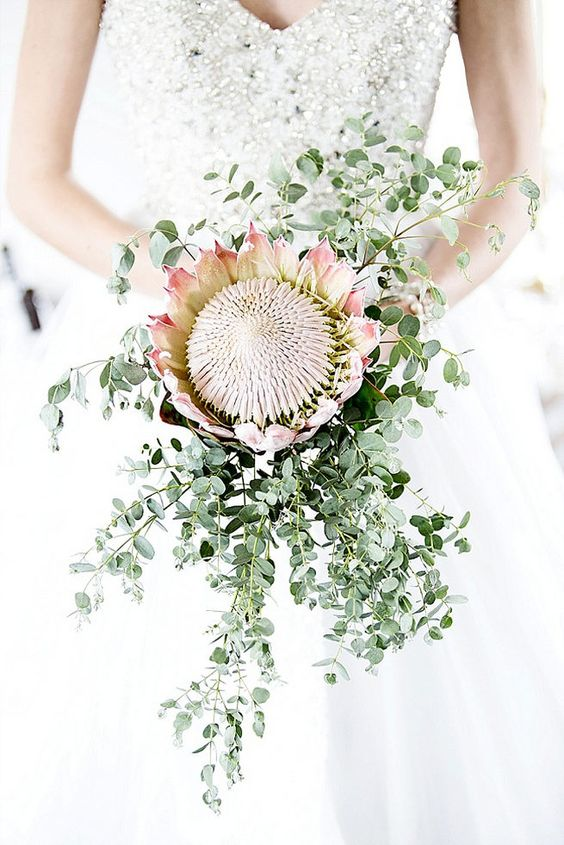 a large king protea and some greenery around it with a cascade for a stylish modern look