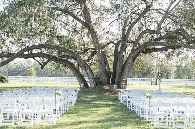The ceremony space was done with white chairs and an oversized tree became a natural backdrop