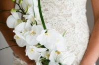 06 a sophisticated yet very simple bridal bouquet of white orchids and some greenery