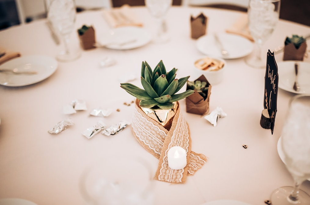 The wedding tablescapes were simple, rustic and very cute, with chic succulent wedding favors