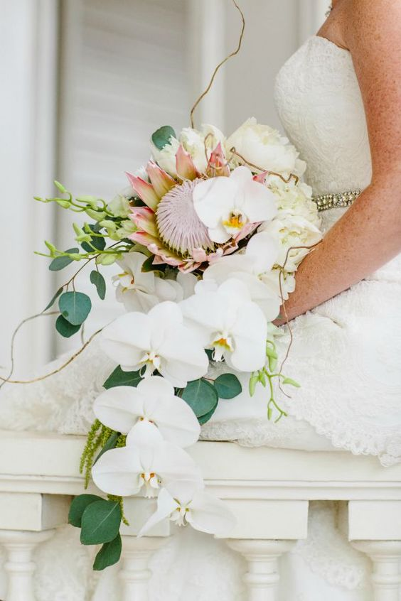 a cascading tropical wedding bouquet with white orchids, greenery and a king protea for a bold statement