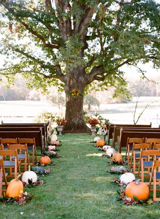 a rustic wedding ceremony space lined up with pumpkins and fall leaves for a cozy feel