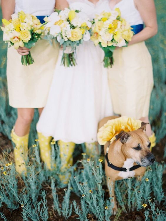 yellow rain boots and matching yellow and white bouquets for the bridal party
