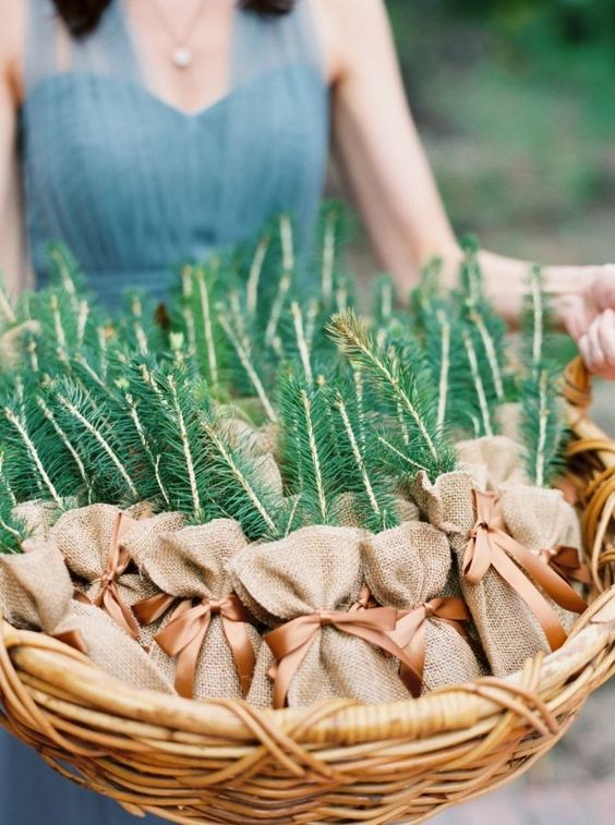little pines planted into pots of your choice are a nice idea for a rustic fall wedding
