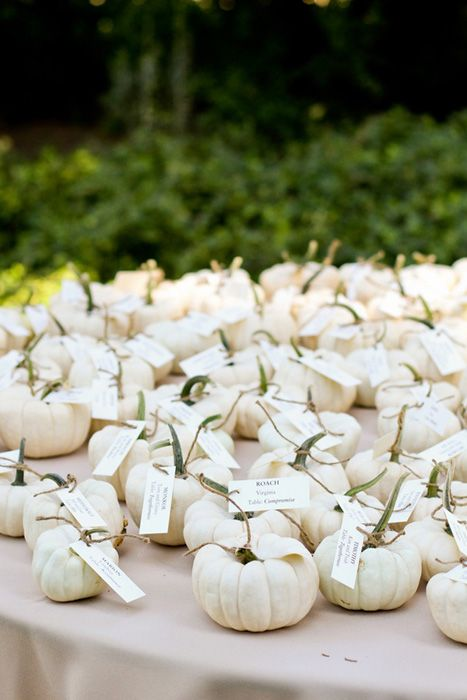miniature ghost pumpkins can be used as cute little favors and to display escort cards at the same time