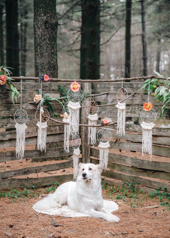 Dreamcatchers were hung as wedding favors, and a cute pup took part in the shoot