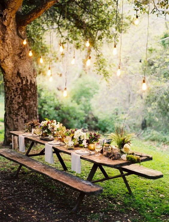 hang some bulbs right over the reception table, even if it's a living tree, it will be a very contrasting setup