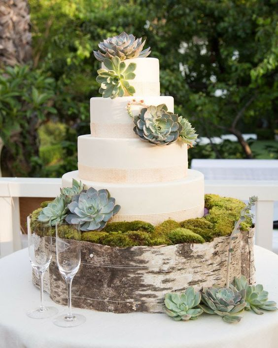 a cake stand covered with moss, birch bark and succulents to achieve a rustic feel