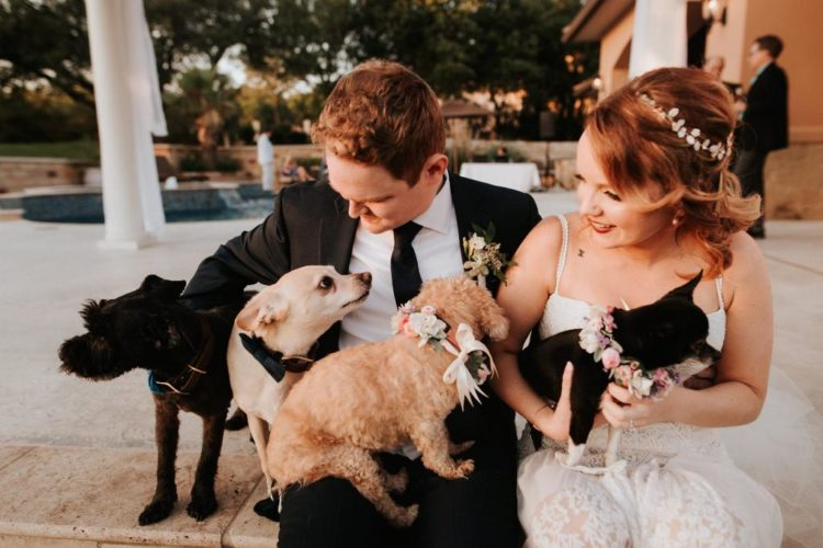 The couple has 6 rescue dogs and they were all present at the wedding running around