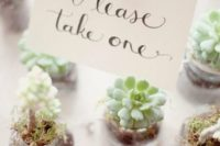 24 little potted succulents are an eco-friendly and trendy idea of wedding favors