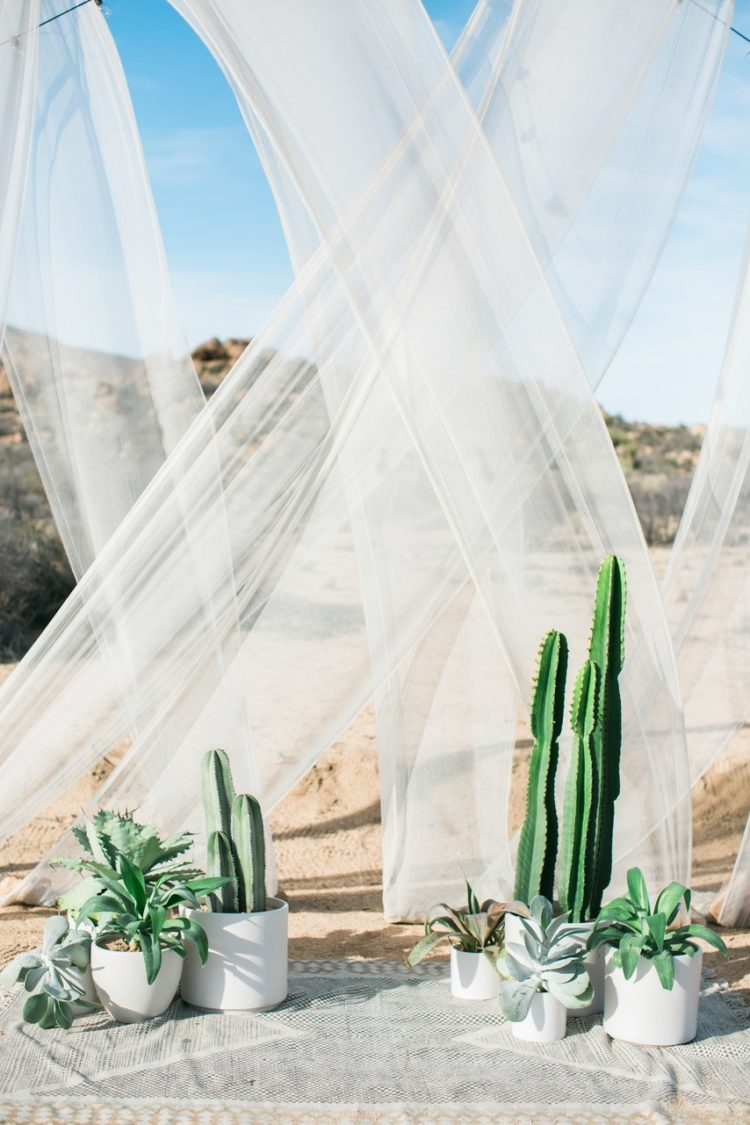 a desert ceremony space with potted cacti, sheer draping, and a bohemian accent rug make for one beautifully unexpected combo