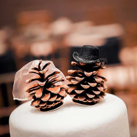 top your wedding cake with a duo of pinecones with a tall hat and a veil to imitate you two, and add more pinecones around