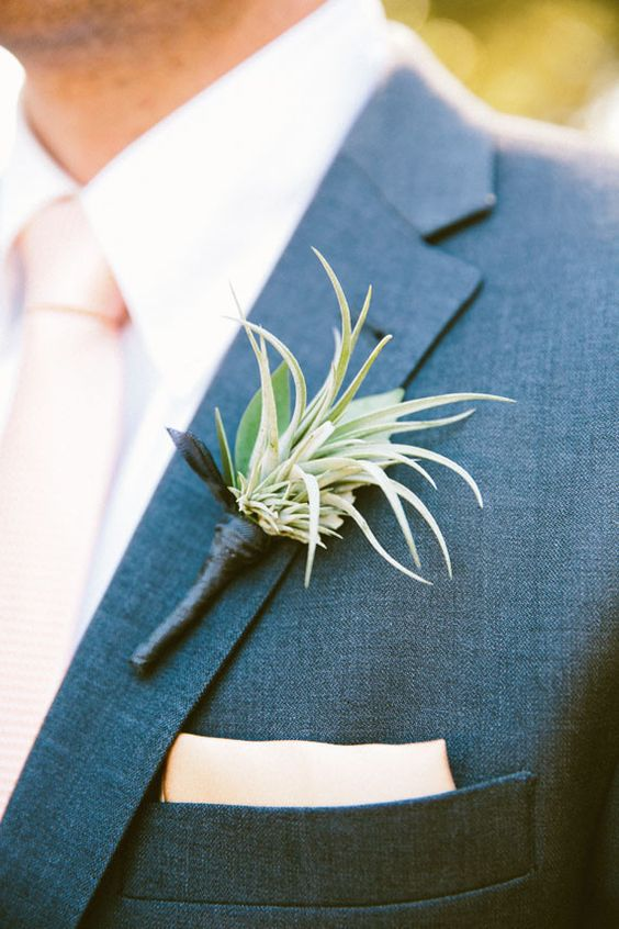 an air plant boutonniere with a dark wrap for an edgy feel and a bright look