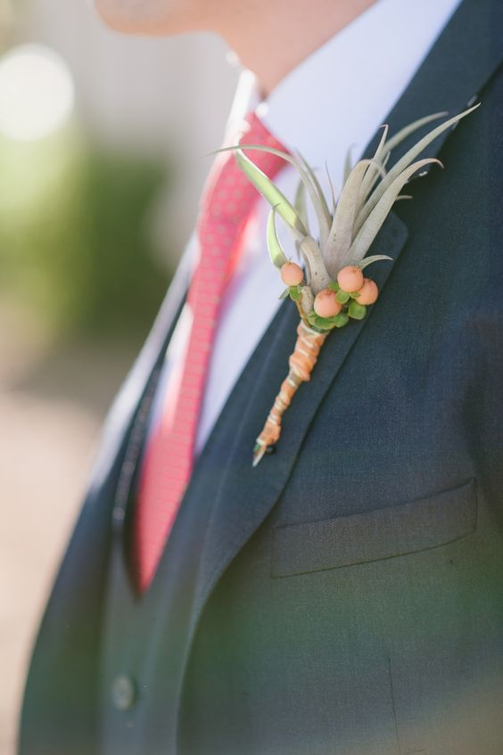 an air plant paired with hypercum berries that match the groom's tie in color