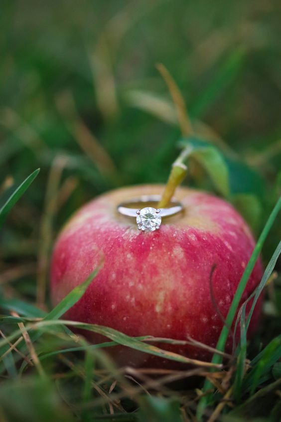 use an apple or a pear to display your engagement ring in the fall, it's very fall like and cute