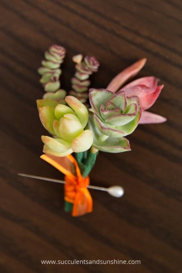 DIY succulent wedding boutonniere (via www.succulentsandsunshine.com)