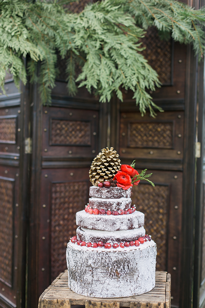 a bark-imitating wedding cake with cranberries, red blooms and a large pinecone on top is chic for a Christmas celebration