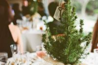22 a simple and cute rustic wedding Centerpiece of a baby pine tree planted and wrapped with burlap