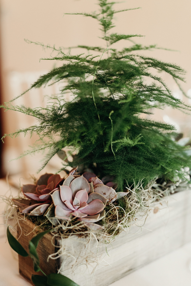 The wedding centerpieces were done with moss, ferns and various succulents, botanicals were the theme of the celebration