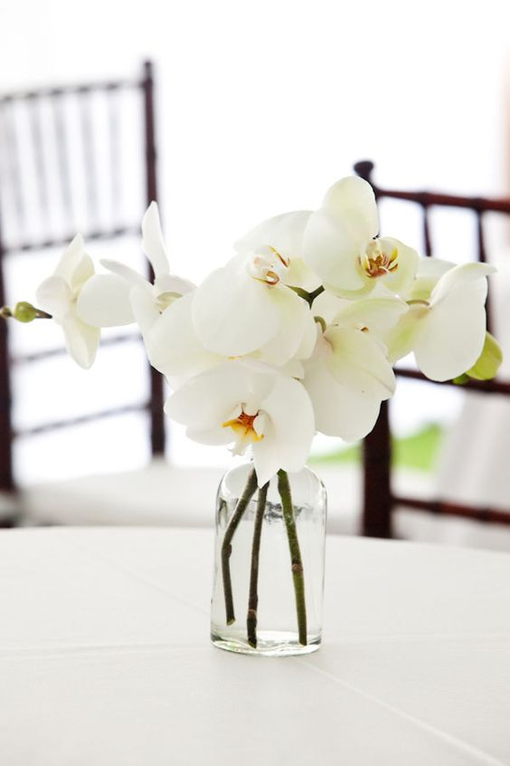 a chic and simple wedding centerpiece of a clear glass vase and white orchids   you won't need more