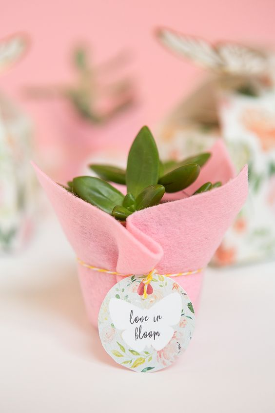 DIY succulent wedding favors with cool printed labels will make your guests remember of your wedding later